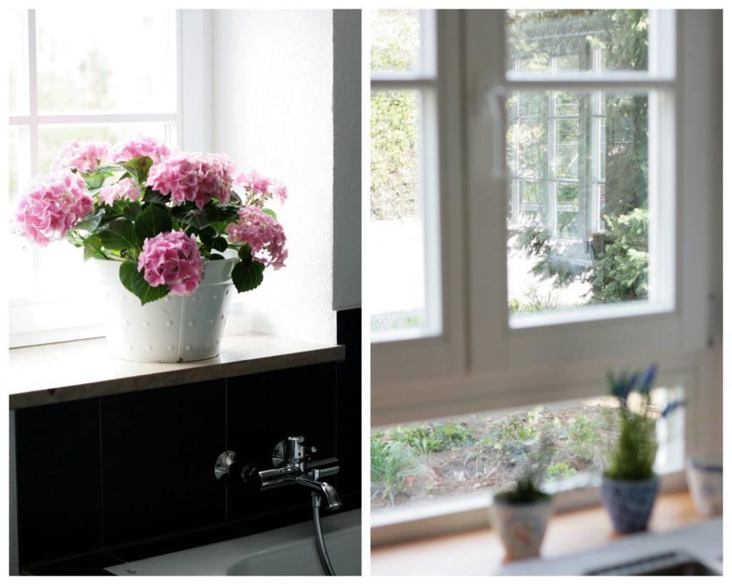 Streifenfreie Fenster