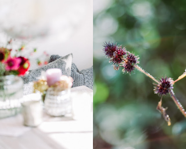Herbst, Interior und Gartenimpressionen, Pomponetti