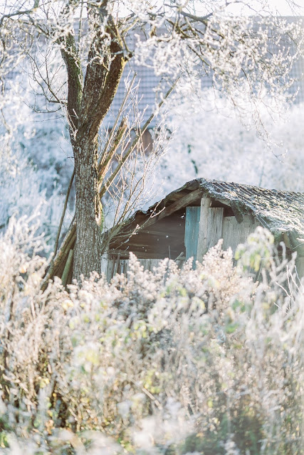 Pomponetti, Winterimpressionen