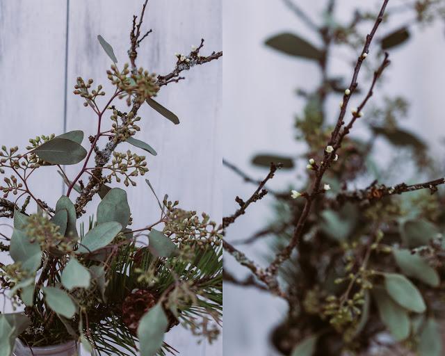 Schlehenzweige und Eukalyptus, Pomponetti