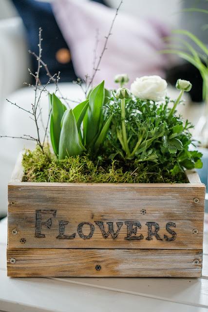 3 DIY Ideen, wie du deine Frühjahrsblüher in Szene setzt, Interior, Pomponetti