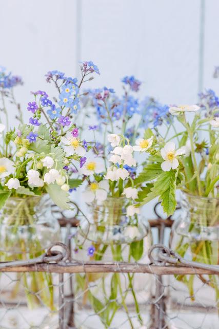 Heute mach ich blau.... Friday Flowerday, Vergissmeinnicht, Pomponetti