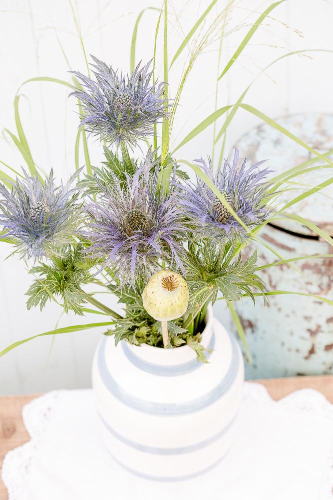 Samstagsblümchen, Pomponetti, Vase Omaggio Kähler, Blaudistel
