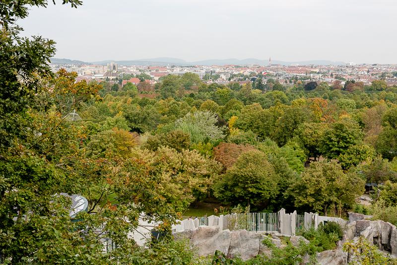 Tiergarten Schönbrunn in Wien, Pomponetti, ältester Zoo der Welt , Baumwipfelpfad
