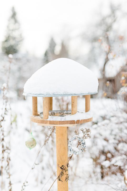 Garten im Winterkleid, Winterimpressionen, Pomponetti