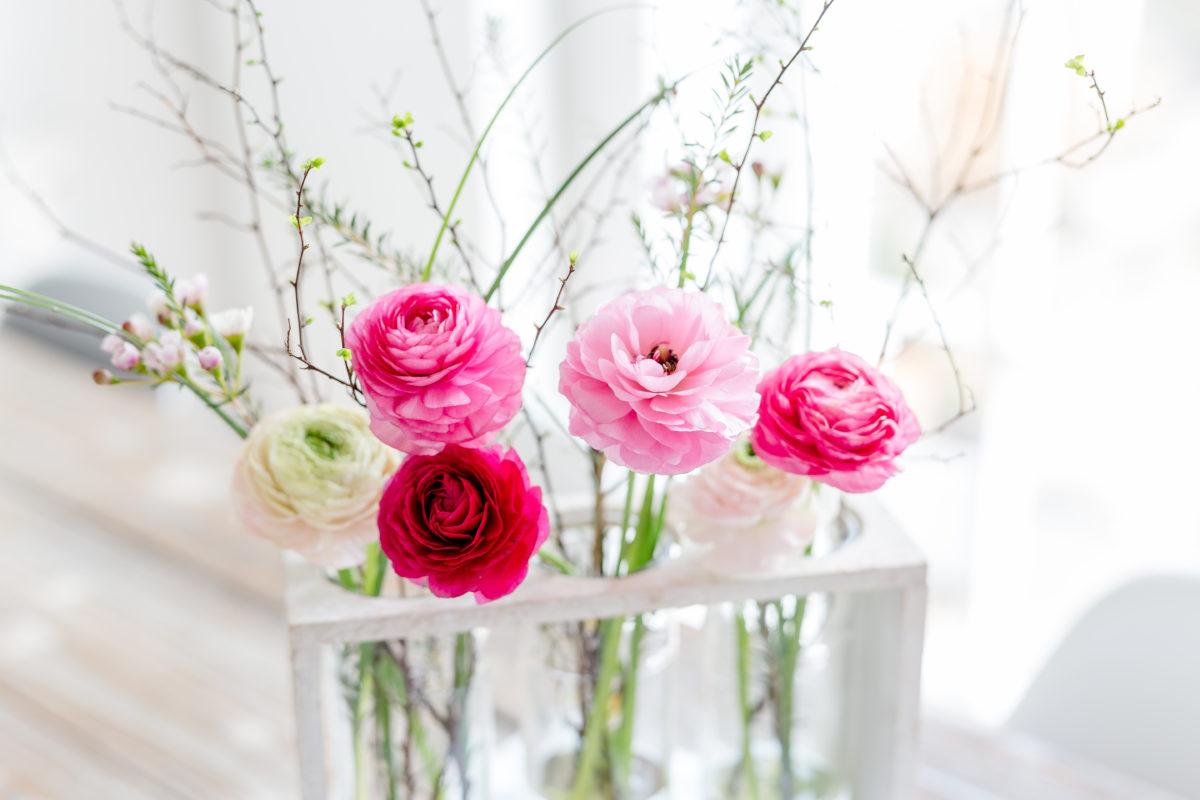 Blogumzug, Cover der Landhaus Living, Friday Flowerday, Pomponetti