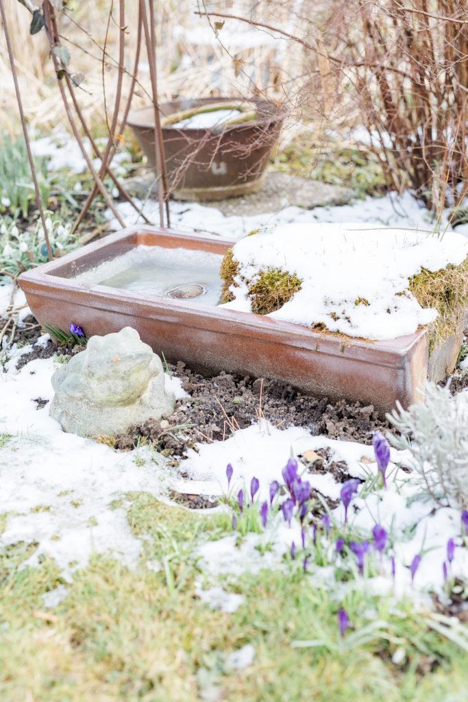 Frühlingsanfang, Pomponetti