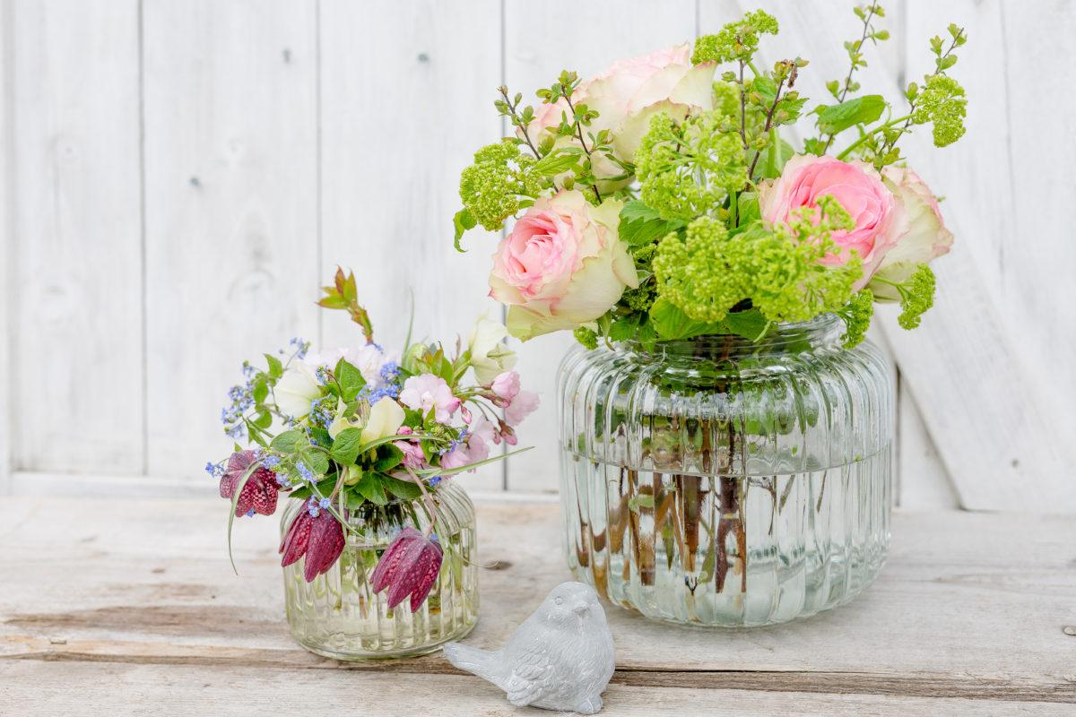 Frühlingsblumen aus dem Garten zum Friday Flowerday, Pomponetti