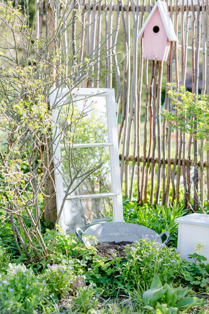 Gartenzauber im April, Pomponetti