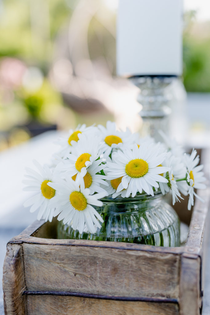Blumen in Hülle und Fülle, Pomponetti, Margeritenstrauß
