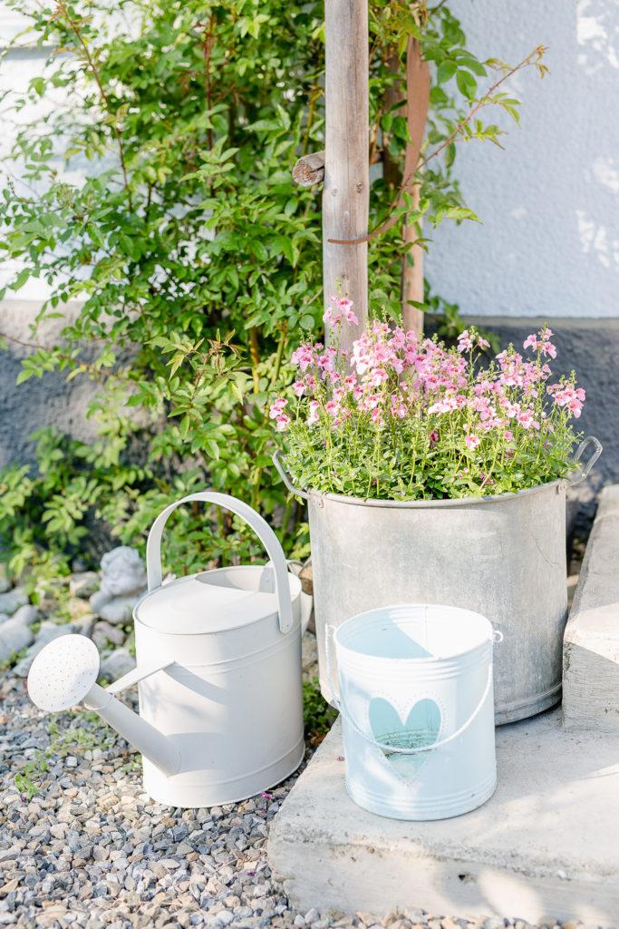 Blumen in Hülle und Fülle, Pomponetti, Gartenimpressionen
