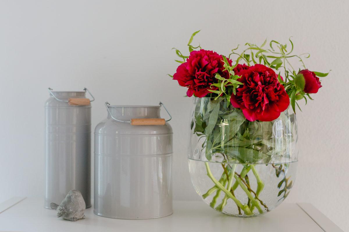 Blumen in Hülle und Fülle, Pomponetti, Pfingstrosen