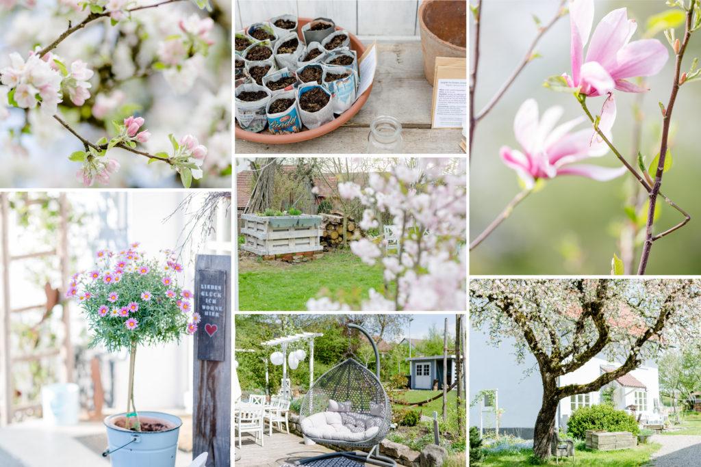 Monatsrückblick Garten, Monatscollage, Pomponetti