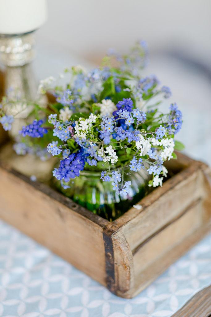 Vergissmeinnicht, Friday Flowerday, Pomponetti