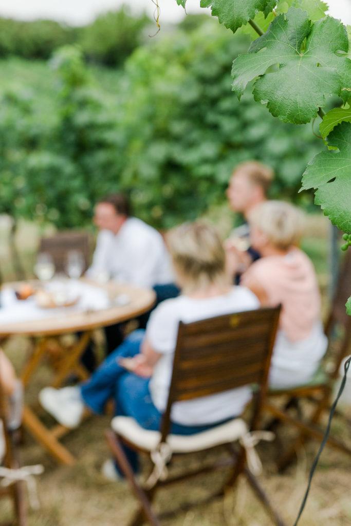 Sommer Feeling im Weinberg oder Weinreise Wien, Pomponetti