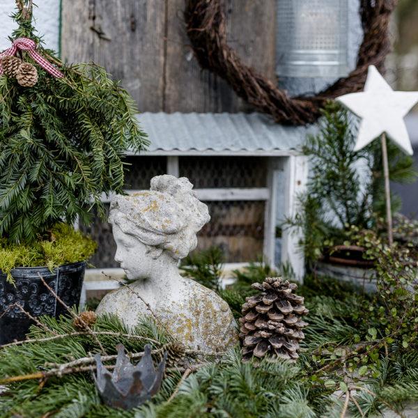 Weihnachtlicher Zauber im Novembergarten, Pomponetti