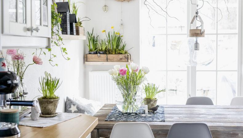 Sanfte Frühlingsbrise im Februar mit zarten Farben