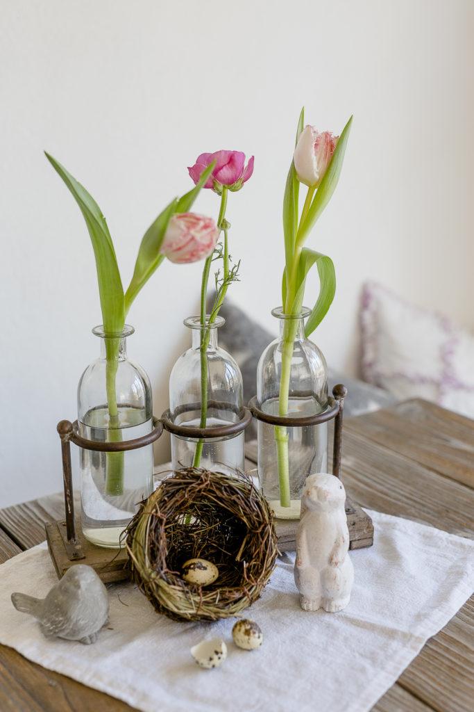 Frühlingserwachen im Februar, Pomponetti