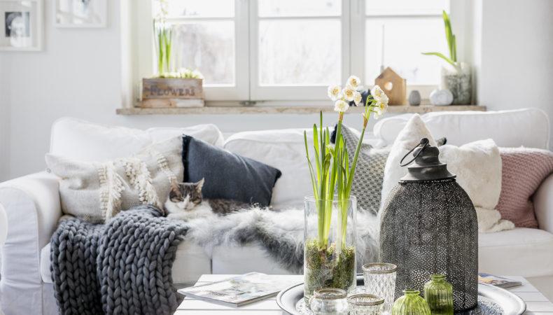 Leichte Frühlingsanzeichen im Wohnzimmer