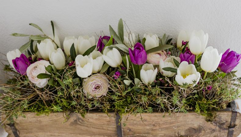 Mit Frühlingsblumen in den März und Teegewinner