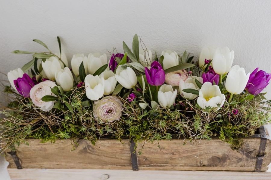 Mit Frühlingsblumen in den März , Pomponetti