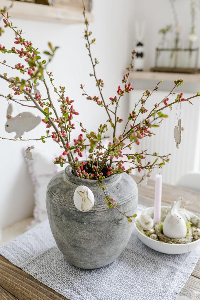 Zierquitte, Blütenschönheit aus dem Garten, Pomponetti