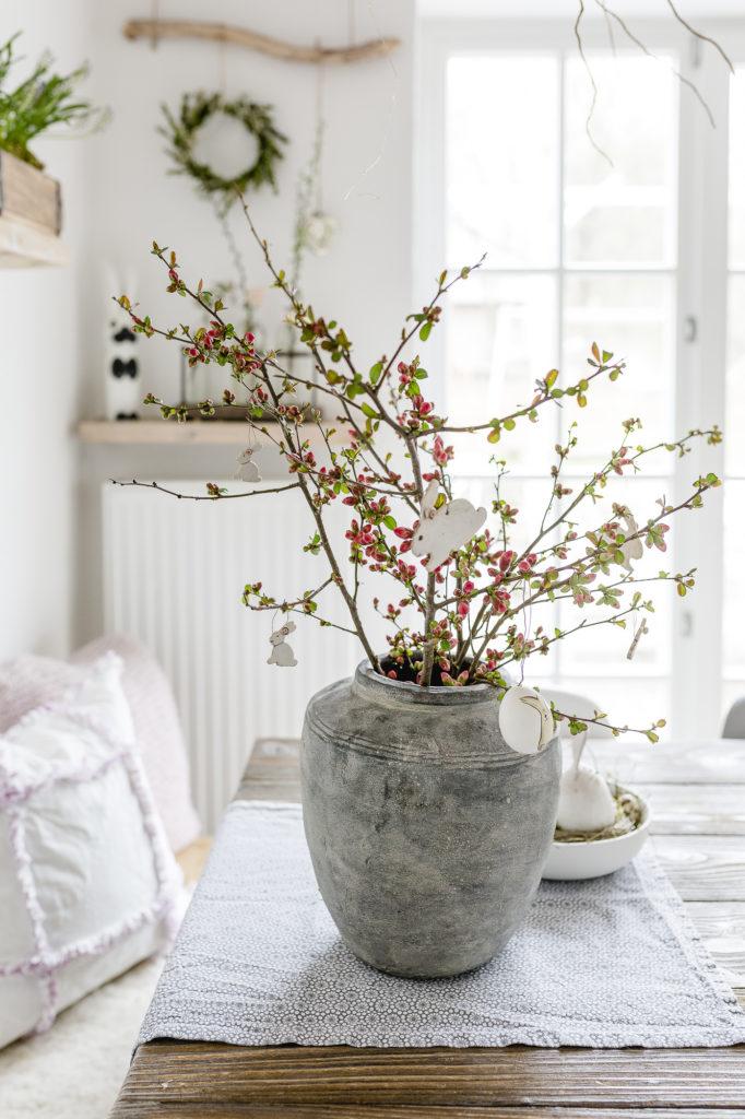 Zierquitte, Blütenschönheit aus dem Garten