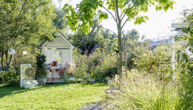 Herbstdekoration in meinem Garten Mitte September