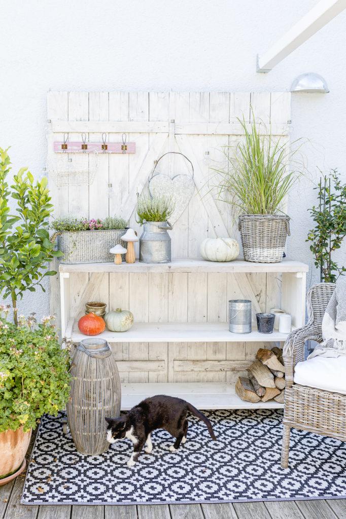 Herbstdekoration im Garten, Pomponetti