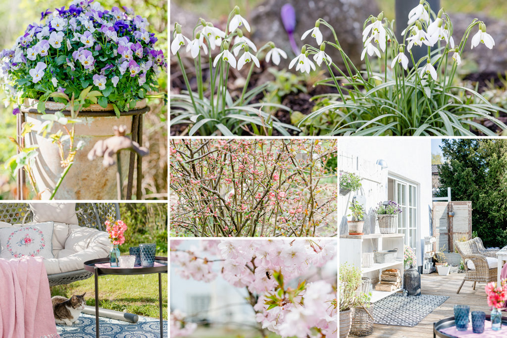 Jahresrückblick 2019, Pomponetti, Garten Frühling
