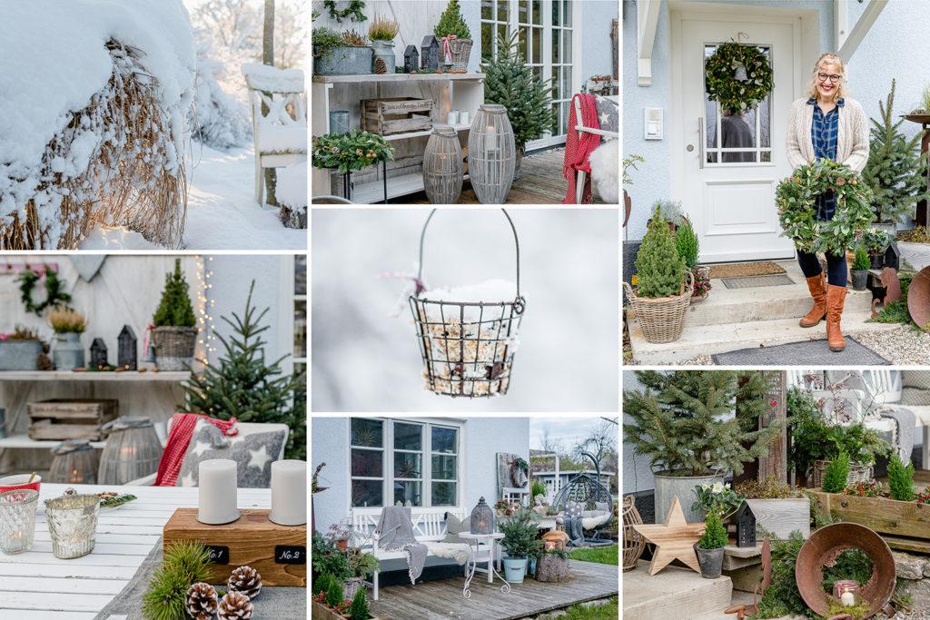 Jahresrückblick 2019, Pomponetti, Garten Winter