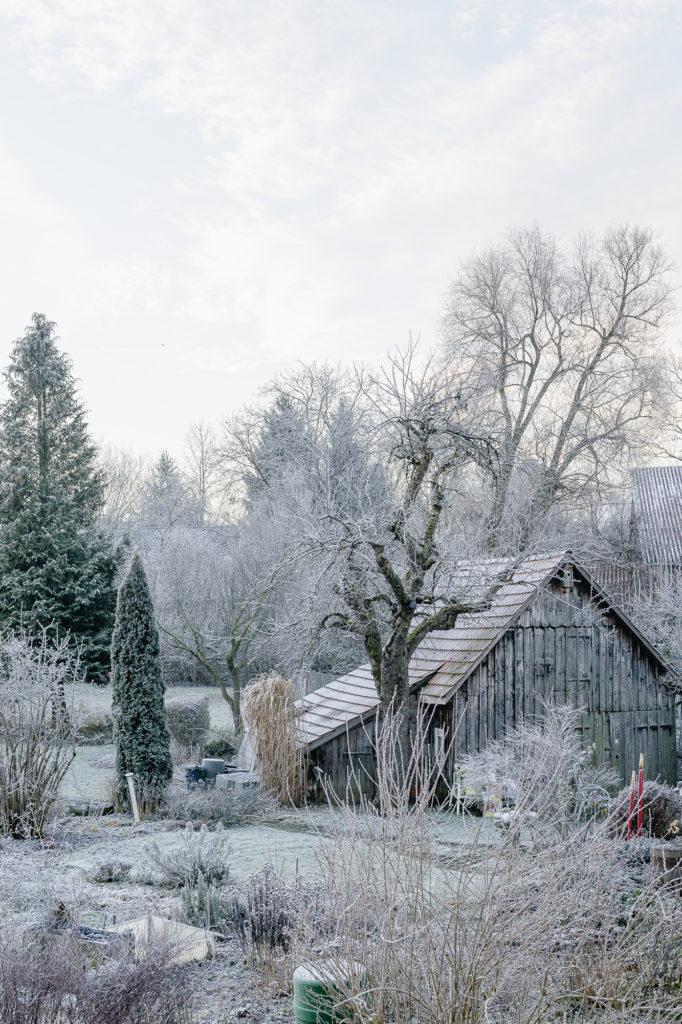 Januargarten