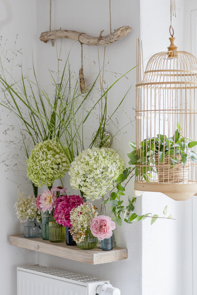 neue Blumendeko, Pomponetti