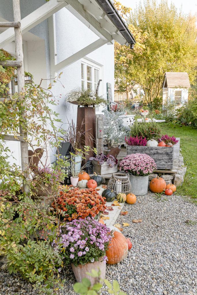 Herbstgarten, Pomponetti