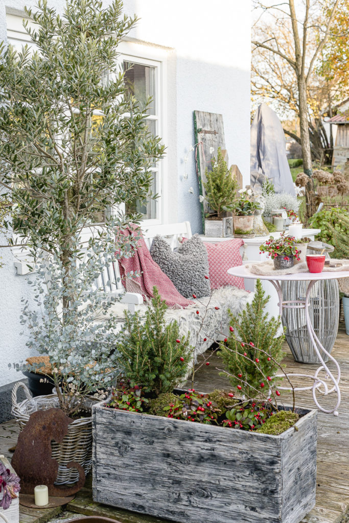 Weihnachtsstimmung im Garten, Pomponetti
