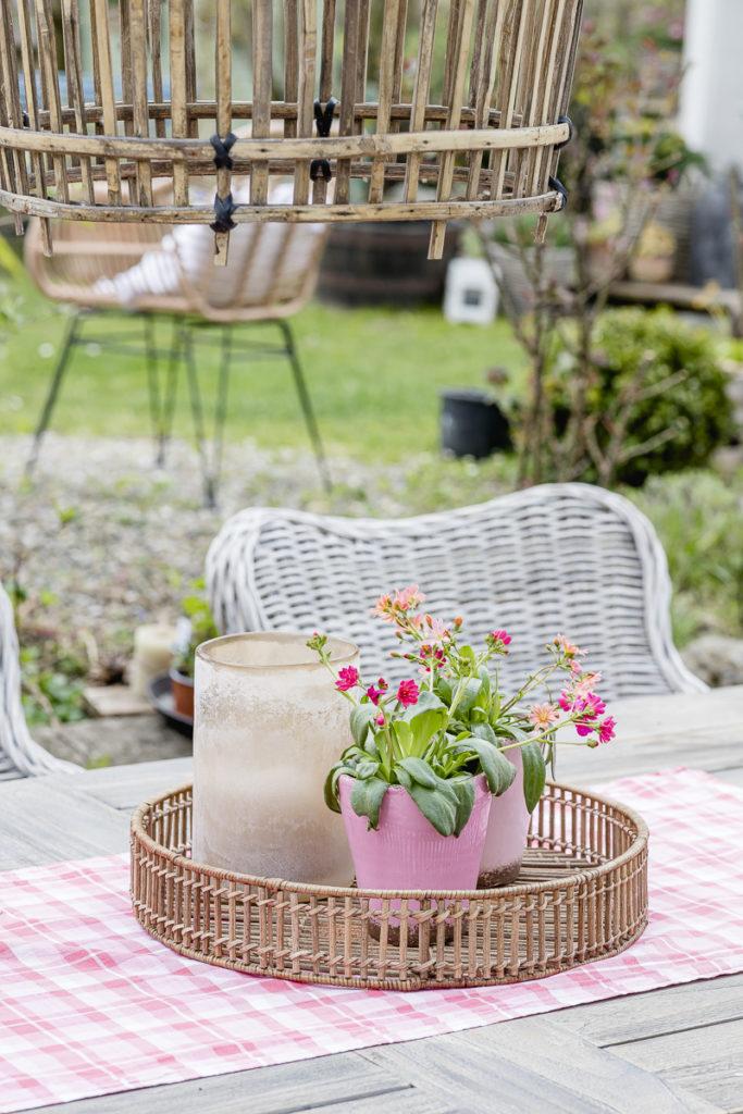 Garten Anfang Mai, Pomponetti