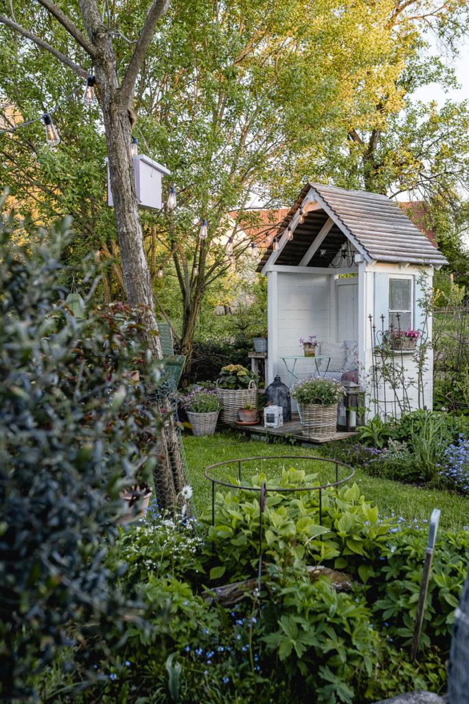 Sommerliche Impressionen aus dem abendlichen Junigarten, Pomponetti