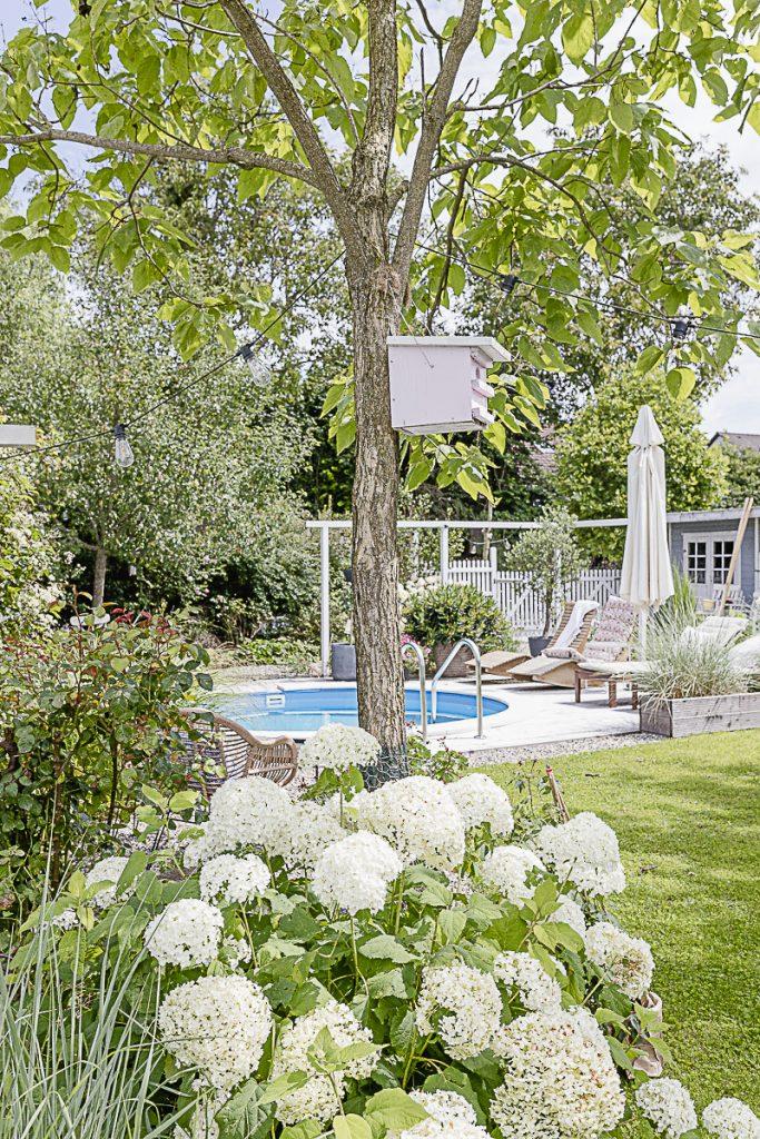 Garten mit Pool, Pomponetti